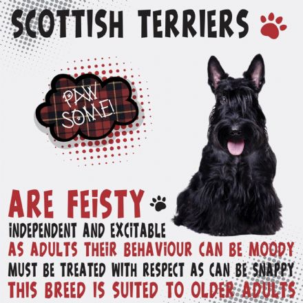 Scottish Terrier Metal Wall Sign